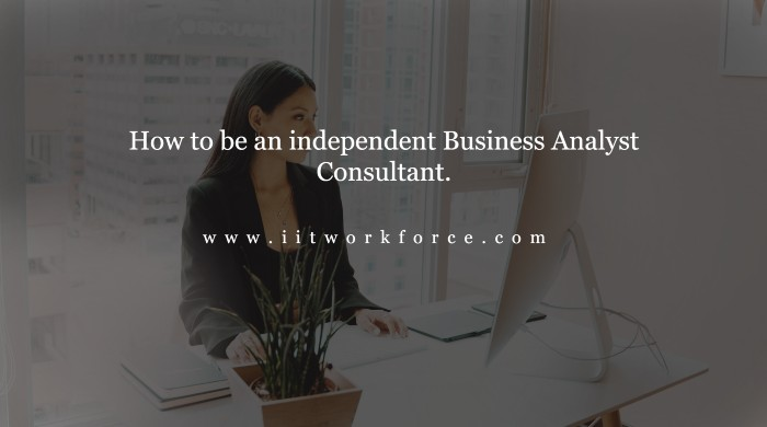 How to be an independent Business Analyst Consultant.